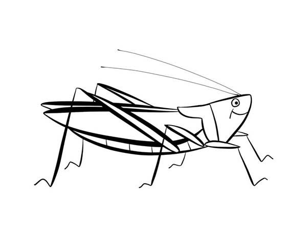Grasshopper, : Eager Grasshopper Coloring Page