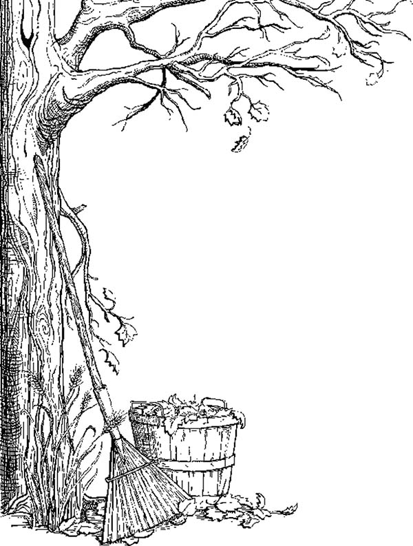Fall Leaf, : Fall Leaf in the Bucket Coloring Page