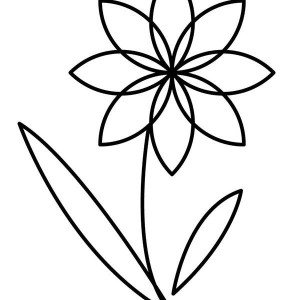 Flower Outline Coloring Page Kids Play Color