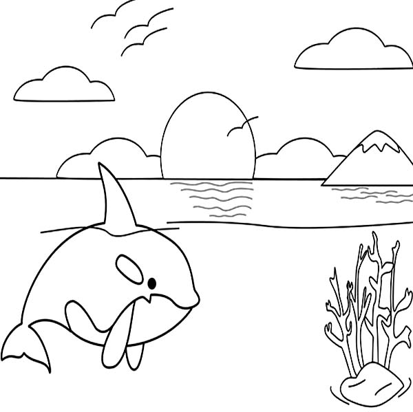 Whale, : Killer Whale on Sunset Beach Coloring Page