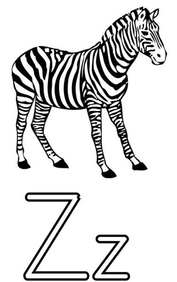 Letter Z Is For Zebra Coloring Page Kids Play Color