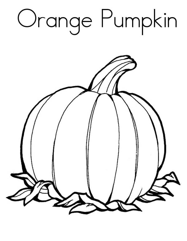 Pumpkins, : Orange Pumpkins Coloring Page