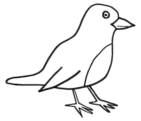 Robin, : Robin Reddish Orange Breast Coloring Page