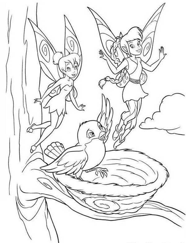 Robin, : Tinkerbel and Robin Bird Coloring Page