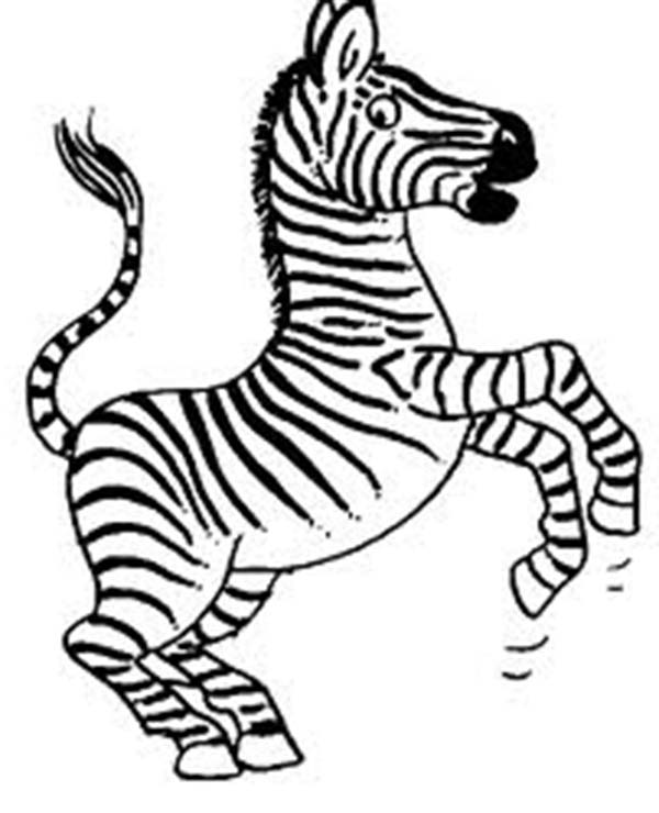 Zebra, : Zebra with Two Legs Coloring Page