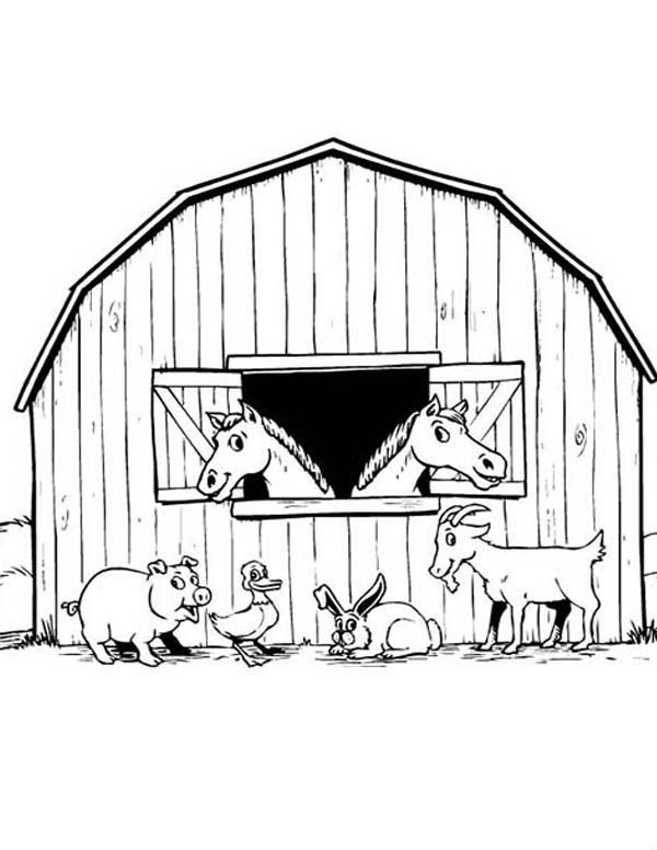 Farm Animal, : Animal Barnyard on Farm Animal Coloring Page