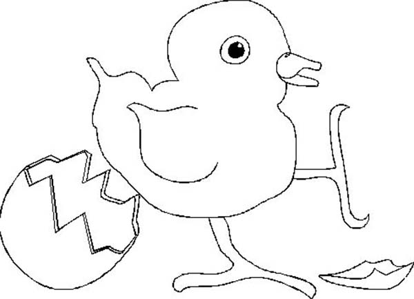 Baby Chick, : Baby Chick Kicking Eggshell Coloring Page