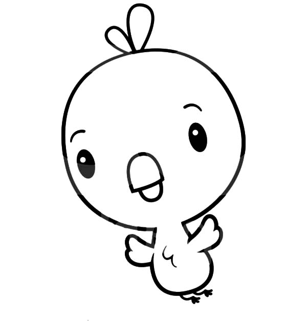 Baby Chick, : Baby Chick Moving His Wing Coloring Page