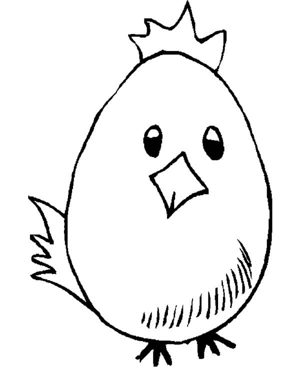 Baby Chick, : Baby Chick Wearing Crown Coloring Page