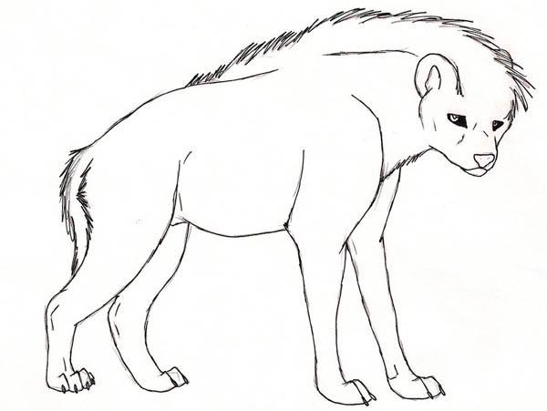 Hyena, : Black Eyed Hyena Coloring Page