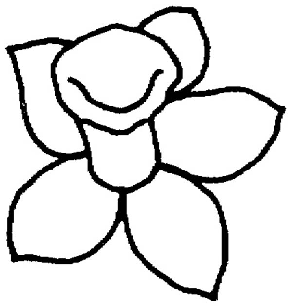 Daffodil, : Daffodil Outline Coloring Page