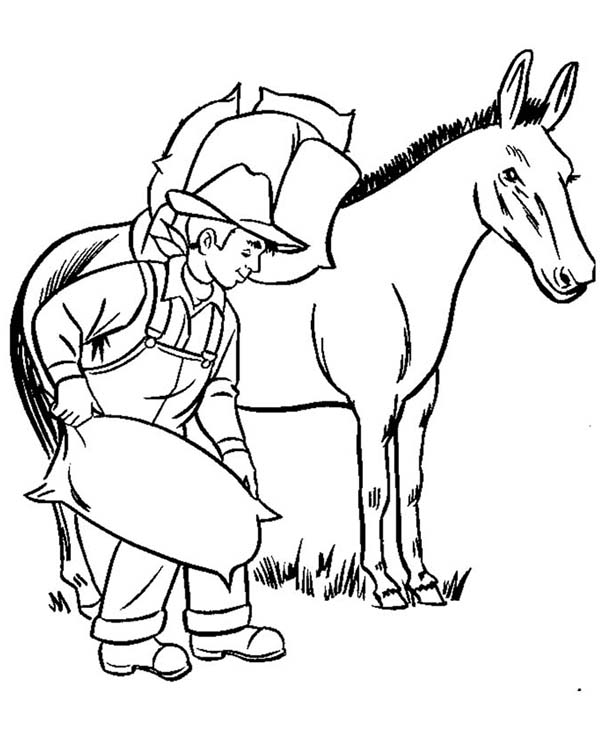 Farm Animal, : Donkey Carrying Bags of Rice in Farm Animal Coloring Page
