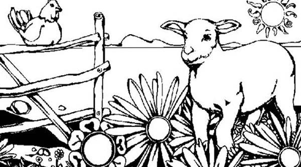 Farm Animal, : Goat and Rooster on Farm Animal Coloring Page