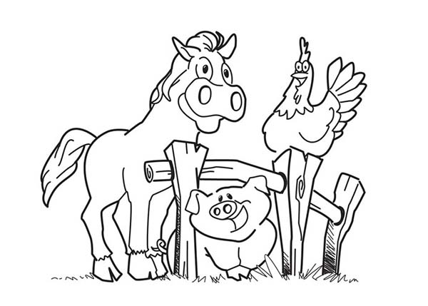 Farm Animal, : Happy Horse and Hen and Pig in Farm Animal Coloring Page
