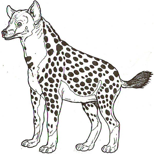 Hyena, : Hyena Look Like Zebra Coloring Page