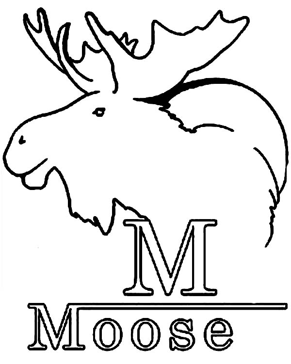 Moose, : M is for Moose Coloring Page