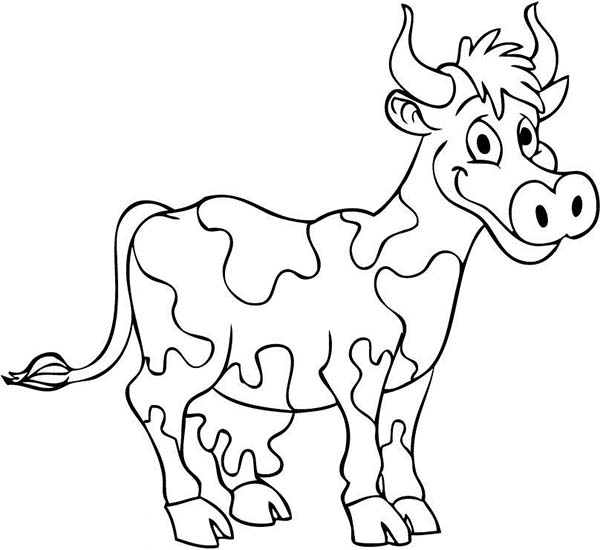 Cow, : Smiling Cow Coloring Page