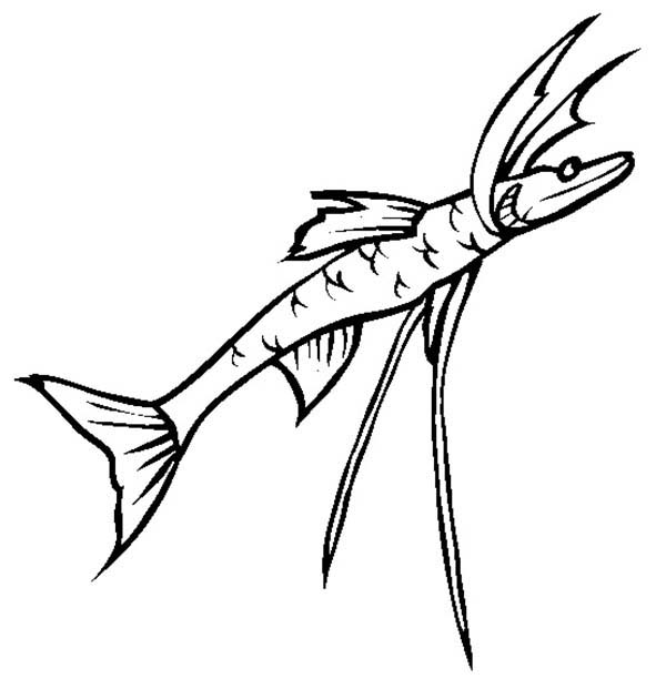 Sea Monster, : Tripod Fish Sea Monster Coloring Page