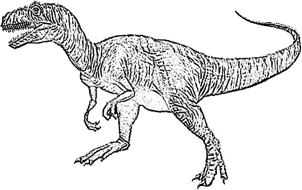 Allosaurus, : Vicious Allosaurus Coloring Page