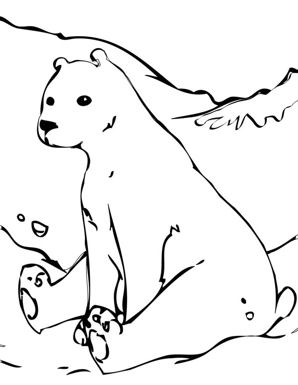 Polar Bear, : Polar Bear Playing Snow Coloring Page