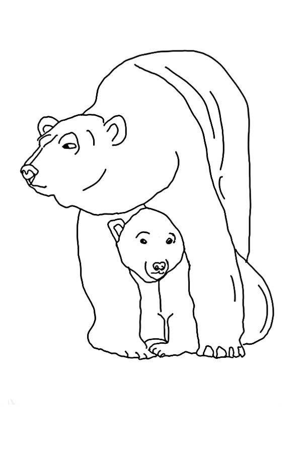 Polar Bear, : Polar Bear Protecting Her Baby Coloring Page