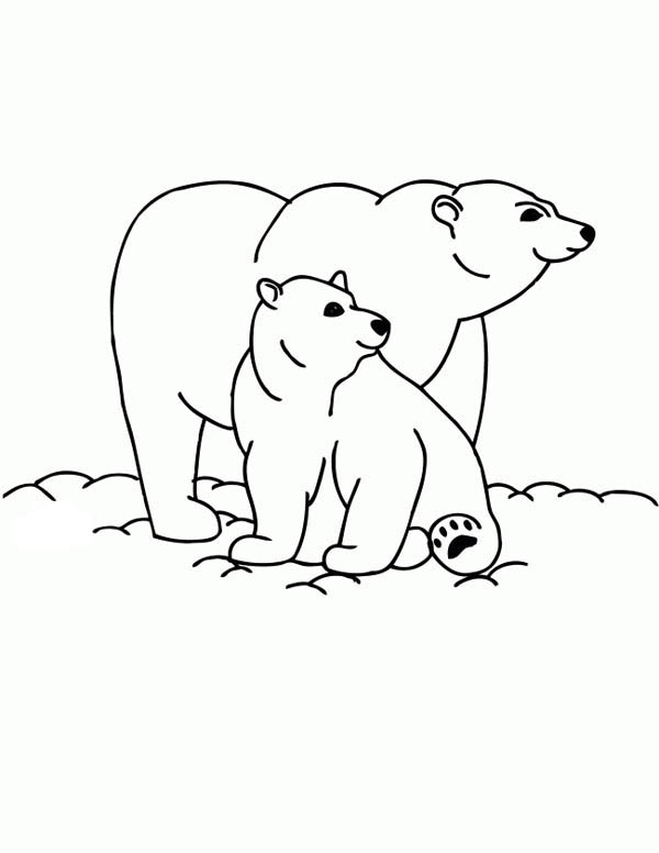 Polar Bear, : Polar Bear and Her Baby Coloring Page