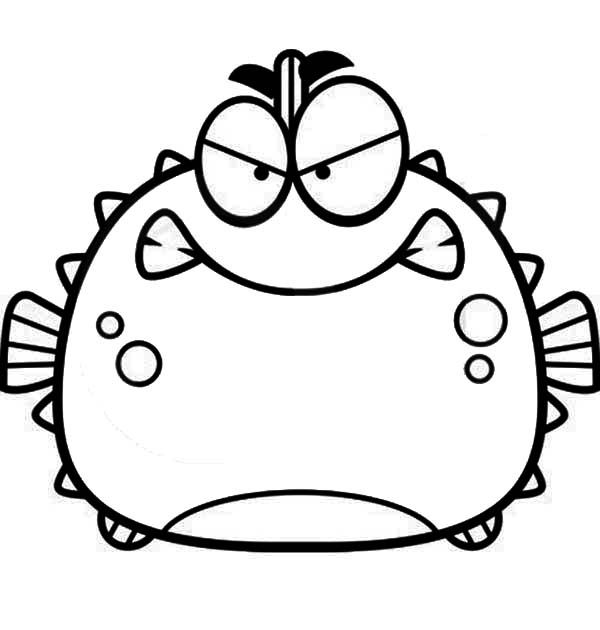 Puffer Fish, : Angry Blowfish Puffer Fish Coloring Page