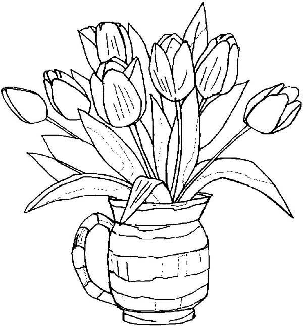 Spring, : Beautiful Tulips on Spring Time Coloring Page