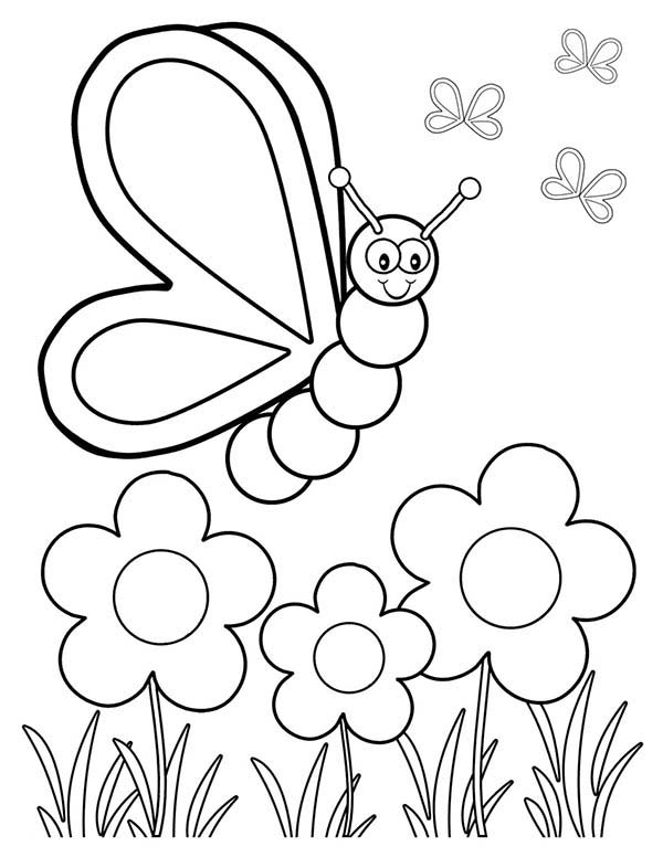 Spring, : Butterfly and Three Spring Flower Coloring Page