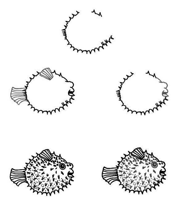 Puffer Fish, : How to Draw Puffer Fish Coloring Page