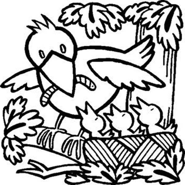 Spring, : Hungry Bird Babies in Spring Season Coloring Page