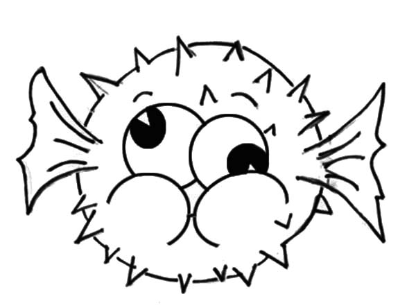 Puffer Fish, : Puffer Fish Silly Face Coloring Page