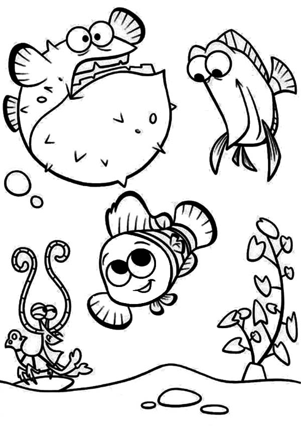 Puffer Fish, : Puffer Fish with Nemo Coloring Page