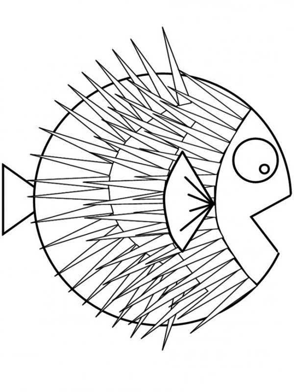 Puffer Fish, : Puffer Fish with Very Sharp Spines Coloring Page