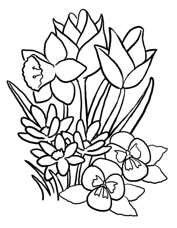 Spring, : Spring Flower Bouquet Coloring Page