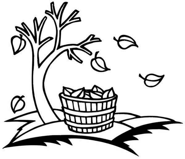 Autumn, : Bucket Full of Autumn Leaf Coloring Page
