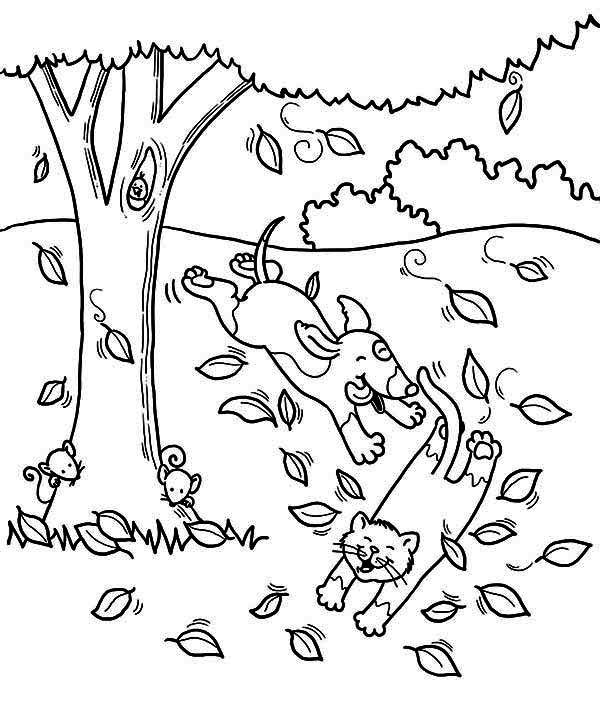Autumn, : Dog Run After Cat Under Autumn Leaf Coloring Page
