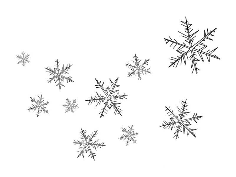 Christmas, : Floating Christmas Snowflakes Coloring Page