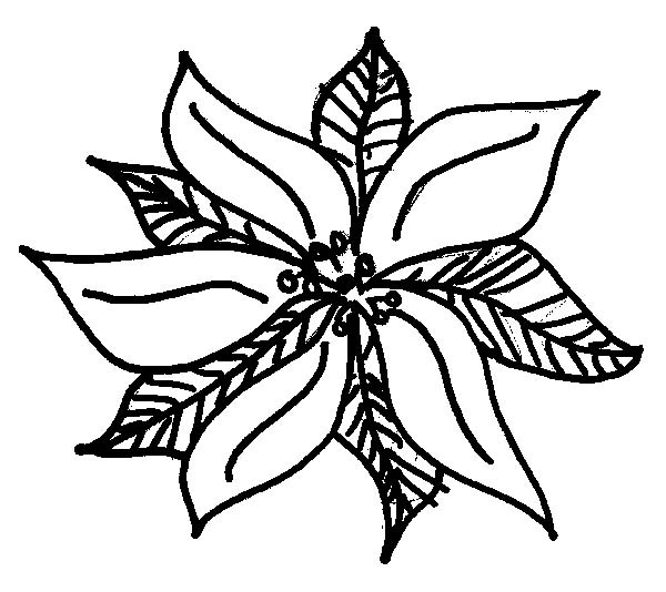 National Poinsettia Day, : Cute Drawing of Poinsettia Sketch for National Poinsettia Day Coloring Page