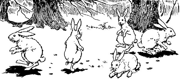 Hopping Bunny, : A Bunch of Hopping Bunny Coloring Pages