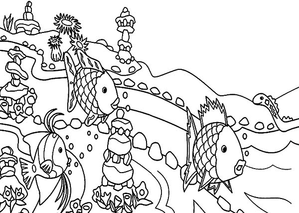 Coral Reef Fish, : Beautiful Coral Reef Fish Coloring Pages