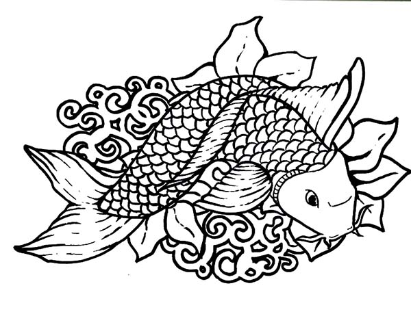 Coy Fish, : Beuatiful Drawing Coy Fish Coloring Pages