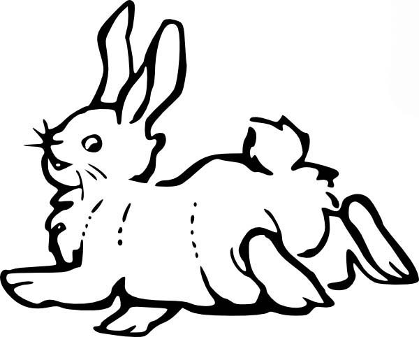 Hopping Bunny, : Bunny Falling After Hopping Coloring Pages