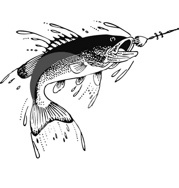 Fishing Lures, : Catching Fish with Fishing Lure Coloring Pages