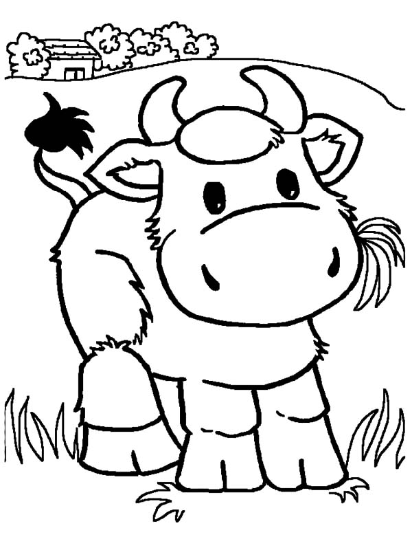 Cows, : Chibi Chibi Cows Coloring Pages