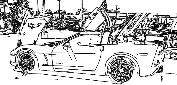 Corvette Cars, : Corvette Cars Exhibition Coloring Pages
