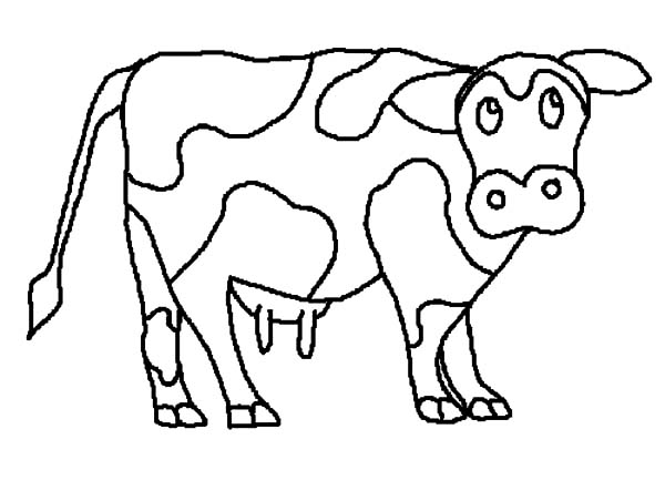 Cows, : Cows Listening to Sound Coloring Pages
