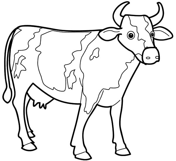 Cows, : Cows Sharp Horn Coloring Pages