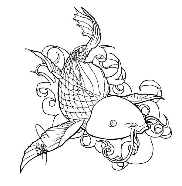 Coy Fish, : Coy Fish Devian Art Coloring Pages