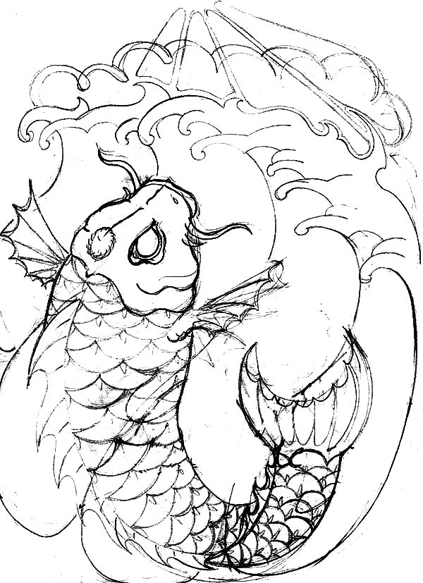 Coy Fish, : Coy Fish Drawing Coloring Pages